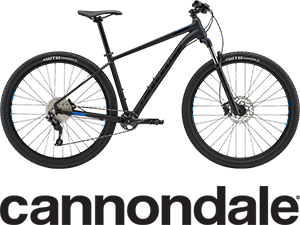 bike rentals bonaire
